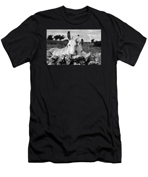 Two White Irish Donkeys Men's T-Shirt (Athletic Fit)