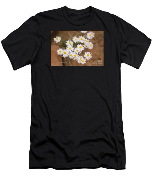 Unidentified Daisy Men's T-Shirt (Athletic Fit)