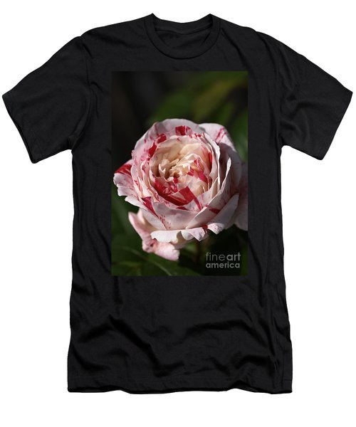 Men's T-Shirt (Slim Fit) featuring the photograph Variegated Rose by Joy Watson