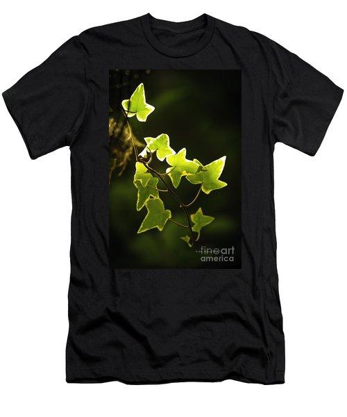 Variegated Vine Men's T-Shirt (Athletic Fit)