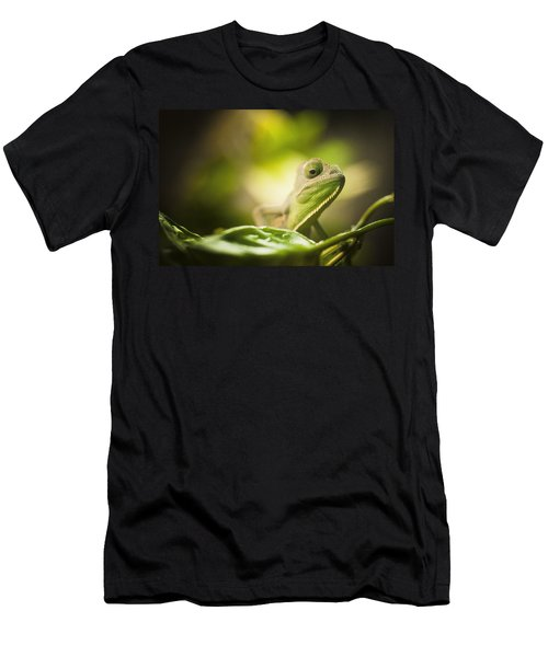 Veiled Chameleon Is Watching You Men's T-Shirt (Athletic Fit)