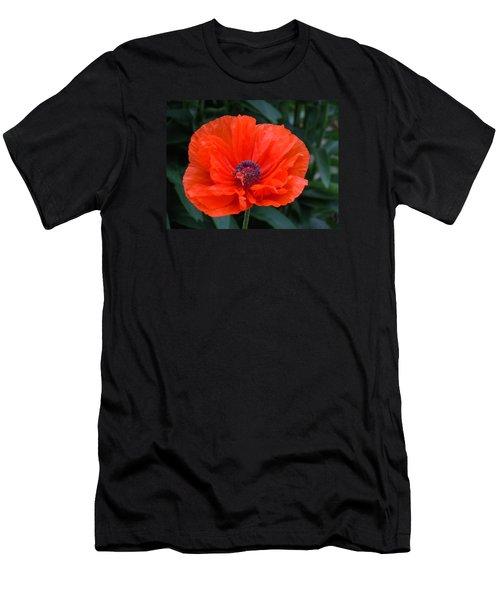 Village Poppy Men's T-Shirt (Slim Fit) by Francine Frank