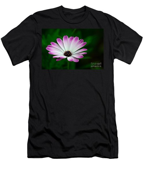 Violet And White Flower Petals With Yellow Stamens Blossoms  Men's T-Shirt (Athletic Fit)