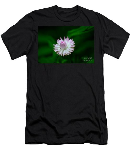Violet And White Flower Sepals And Bud Men's T-Shirt (Athletic Fit)