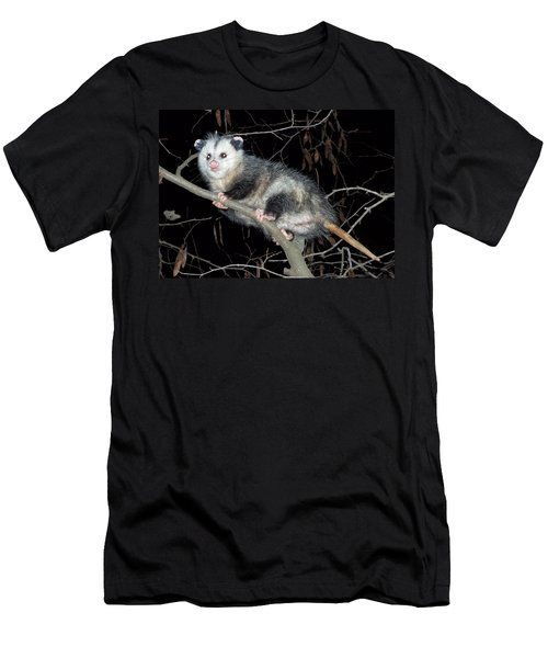 Virginia Opossum Men's T-Shirt (Athletic Fit)