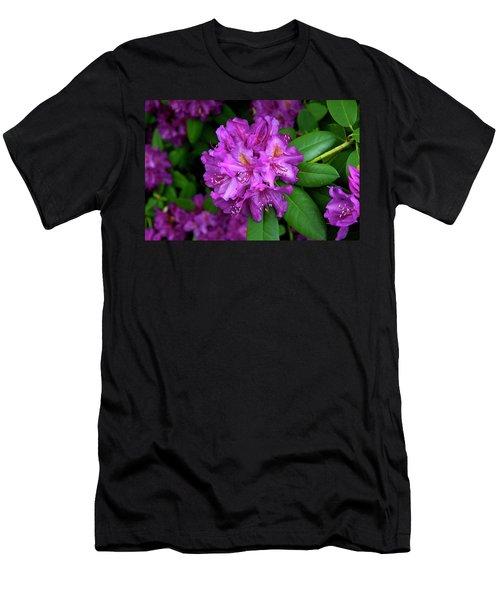 Washington Coastal Rhododendron Men's T-Shirt (Athletic Fit)