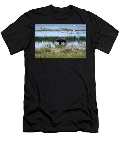 Water Buffalo At Lake Nakuru Men's T-Shirt (Athletic Fit)