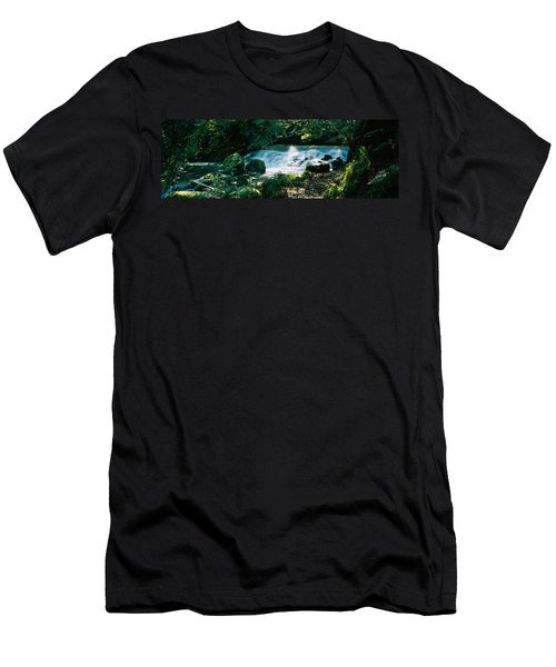 Waterfall In The Forest, Birks O Men's T-Shirt (Athletic Fit)