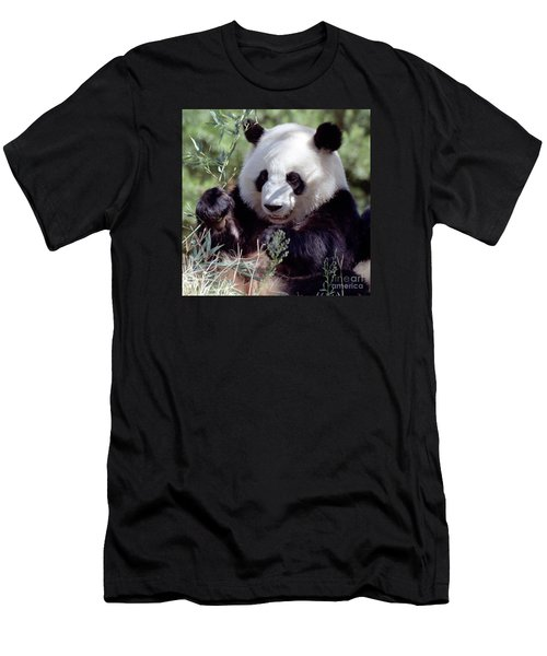 Waving The Bamboo Flag Men's T-Shirt (Athletic Fit)