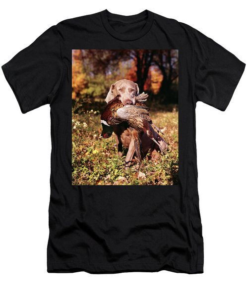 Weimaraner Hunting Dog Retrieving Ring Men's T-Shirt (Athletic Fit)