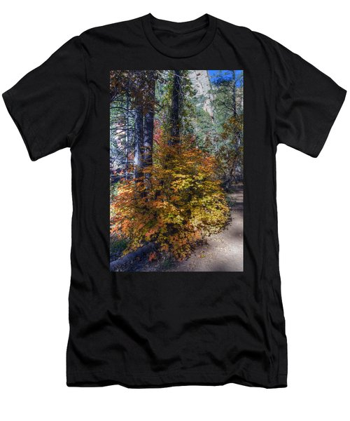 West Fork Fall Color Men's T-Shirt (Athletic Fit)