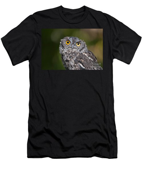 Western Screech Owl No. 3 Men's T-Shirt (Athletic Fit)