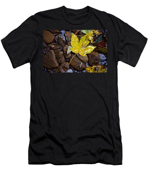 Wet Autumn Leaf On Stones Men's T-Shirt (Athletic Fit)