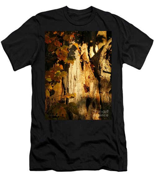 What's In The Crevasses? Men's T-Shirt (Athletic Fit)