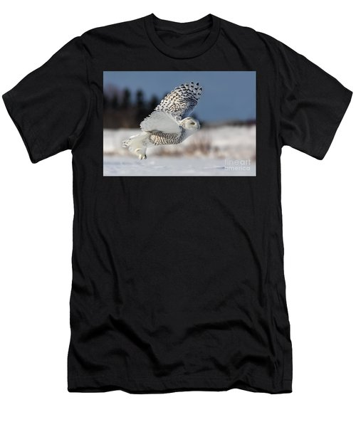 White Angel - Snowy Owl In Flight Men's T-Shirt (Athletic Fit)