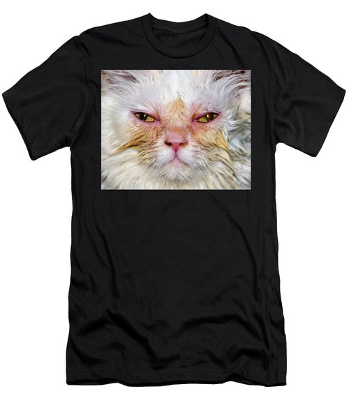 Scary White Cat Men's T-Shirt (Athletic Fit)