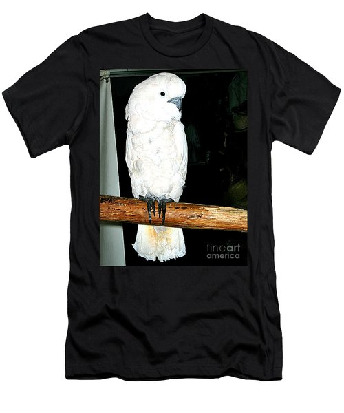 White Cockatiel-loreto Mx. Men's T-Shirt (Slim Fit) by Jay Milo