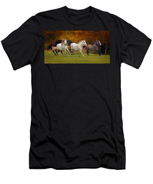 White Horse Vale Lipizzans Men's T-Shirt (Athletic Fit)