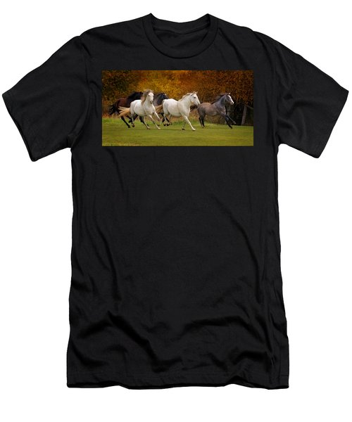 White Horse Vale Lipizzans Men's T-Shirt (Athletic Fit)