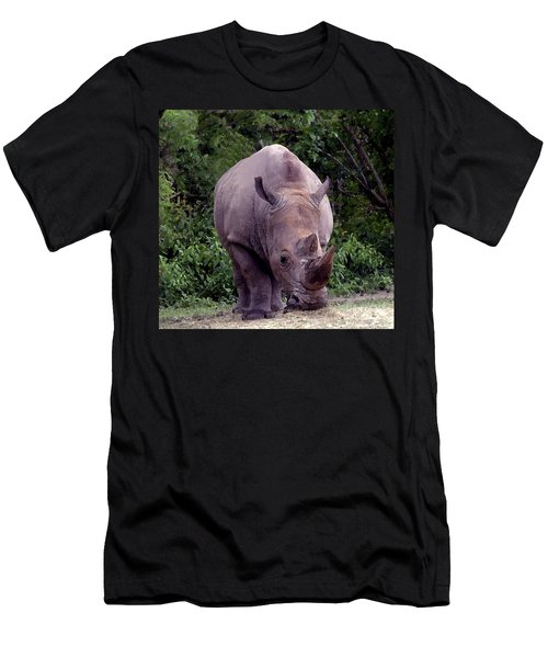White Rhinoceros Water Coloring Men's T-Shirt (Slim Fit) by Joseph Baril