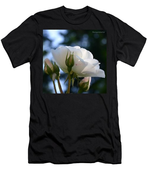 White Rose And Rosebuds In Anna's Gardens Men's T-Shirt (Athletic Fit)