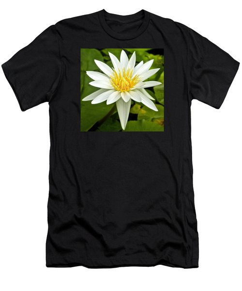 White Waterlily Men's T-Shirt (Athletic Fit)
