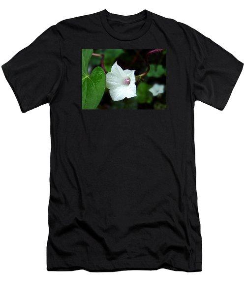 Wild Whitestar Morning Glory Men's T-Shirt (Slim Fit)