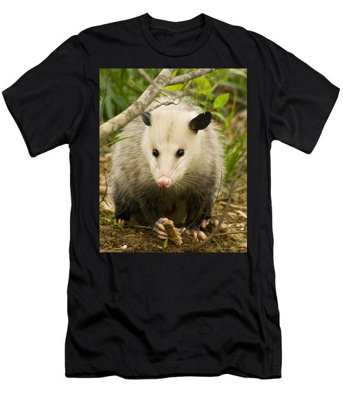 Who Says Possums Are Ugly Men's T-Shirt (Athletic Fit)
