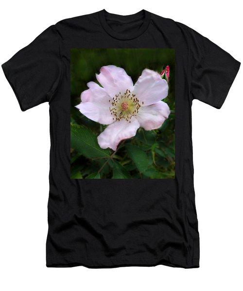 Wild Carolina Rose Men's T-Shirt (Athletic Fit)