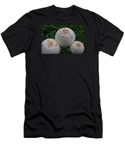 Wild Mushrooms Men's T-Shirt (Slim Fit) by Miguel Winterpacht