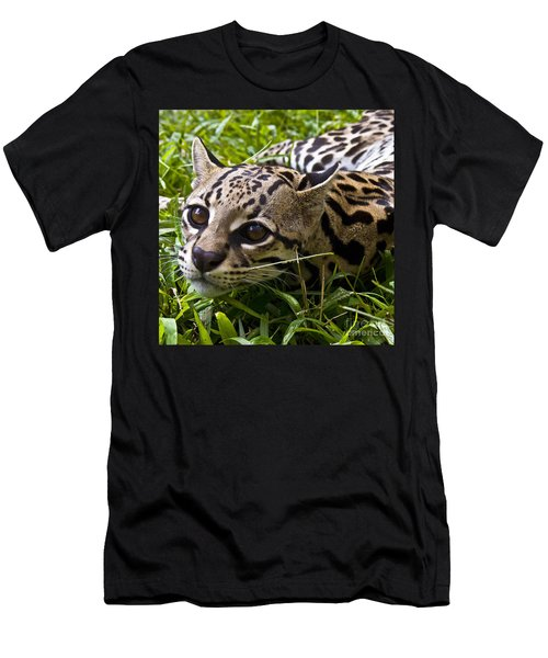 Wild Ocelot Men's T-Shirt (Athletic Fit)