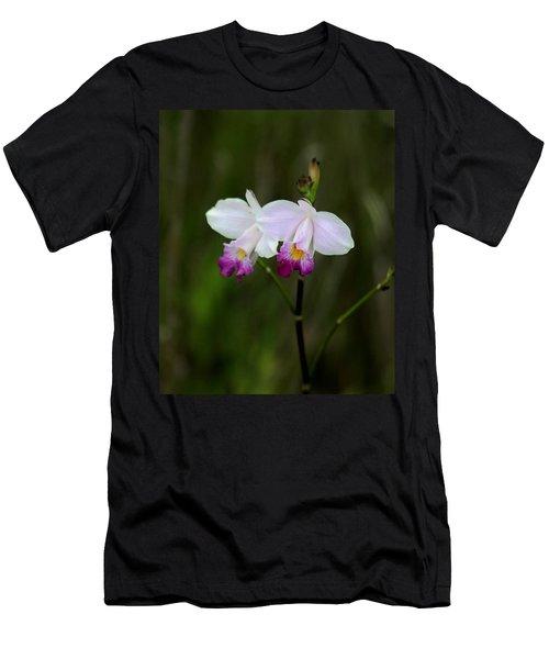 Wild Orchid Men's T-Shirt (Slim Fit) by Pamela Walton