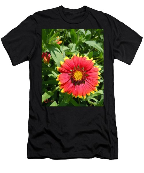 Men's T-Shirt (Slim Fit) featuring the photograph Wild Red Daisy #2 by Robert ONeil