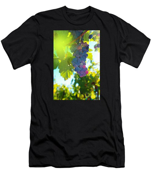 Wine Grapes  Men's T-Shirt (Athletic Fit)