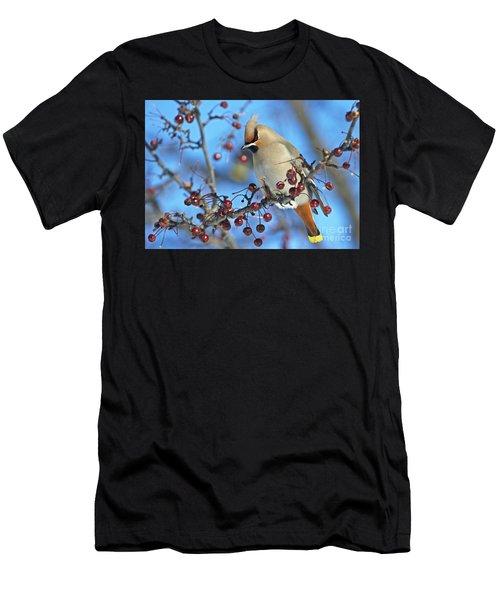 Winter Colors.. Men's T-Shirt (Athletic Fit)