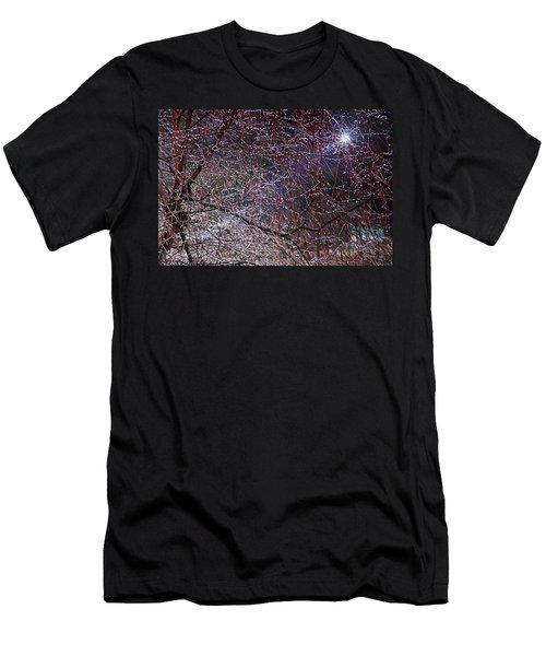 Winter Sun Men's T-Shirt (Slim Fit) by Tom Culver