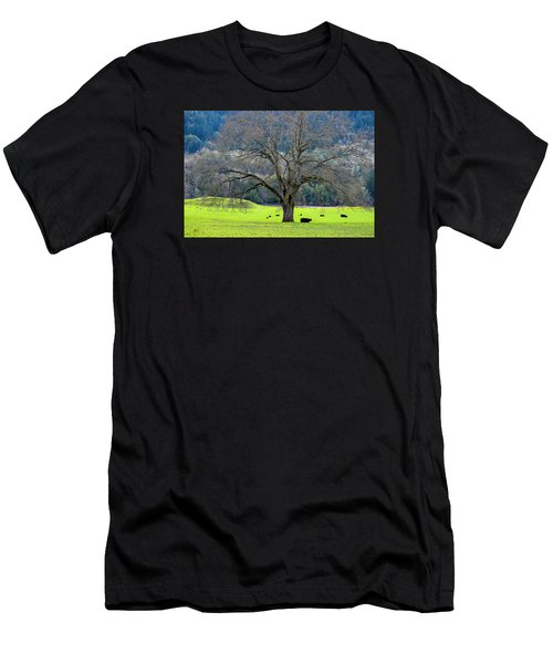 Winter Tree With Cows By The Umpqua River Men's T-Shirt (Athletic Fit)