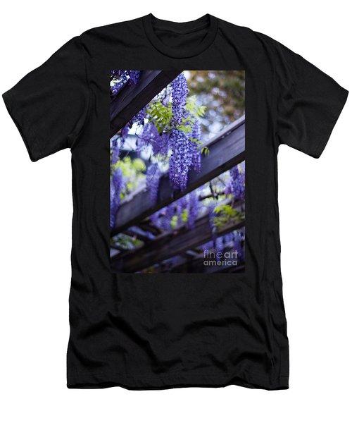 Wisteria Beams Men's T-Shirt (Athletic Fit)