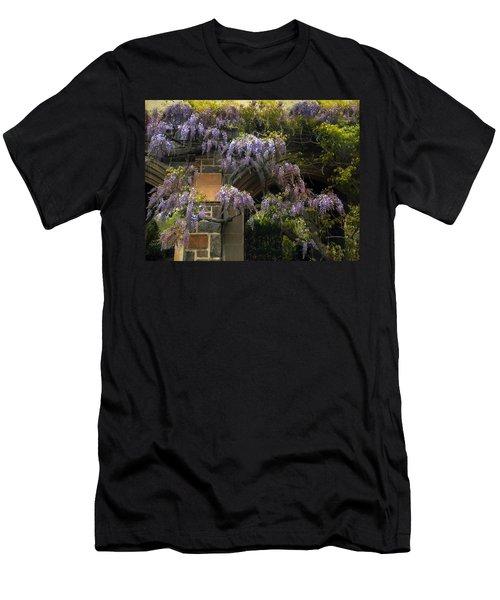 Wisteria Vine Men's T-Shirt (Athletic Fit)