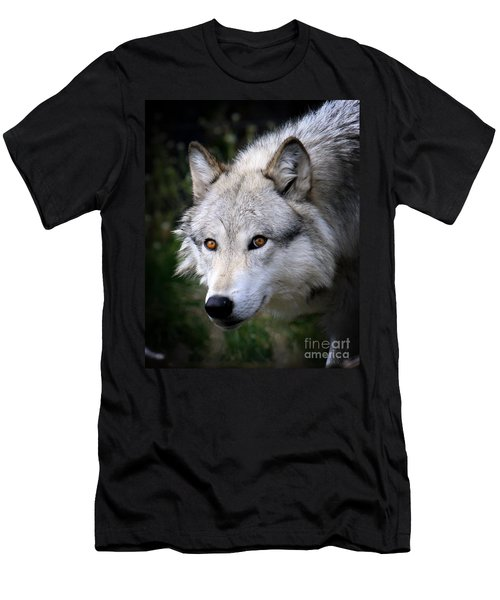 Men's T-Shirt (Slim Fit) featuring the photograph Wolf Stare by Steve McKinzie