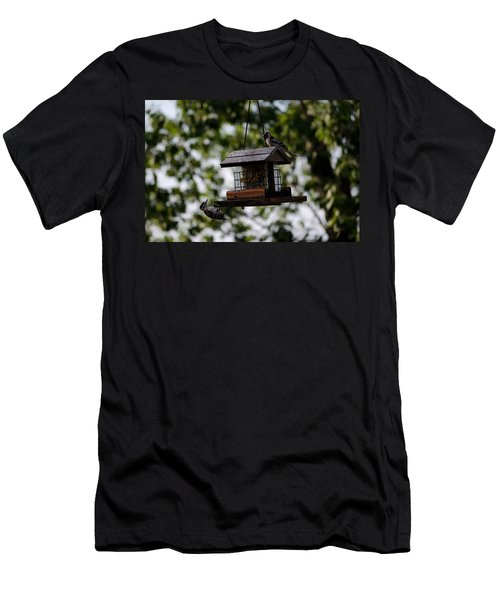Woodpeckers At Dinner Men's T-Shirt (Athletic Fit)