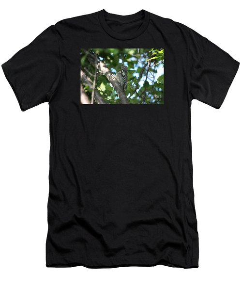 Worn Out Woodpecker Men's T-Shirt (Athletic Fit)