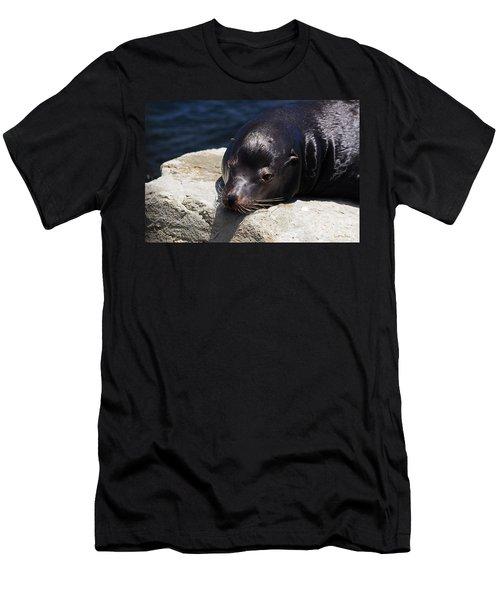 Wounded Sea Lion Resting Men's T-Shirt (Slim Fit) by Susan Wiedmann