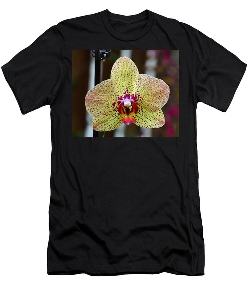 Yellow And Maroon Orchid Men's T-Shirt (Slim Fit) by Kathy Eickenberg