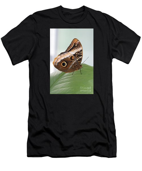 Yellow-edged Giant Owl Butterfly #3 Men's T-Shirt (Athletic Fit)