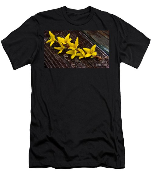 Yellow Forsythia Men's T-Shirt (Athletic Fit)