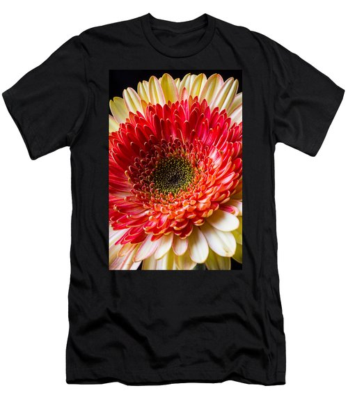 Yellow Red Daisy Men's T-Shirt (Athletic Fit)