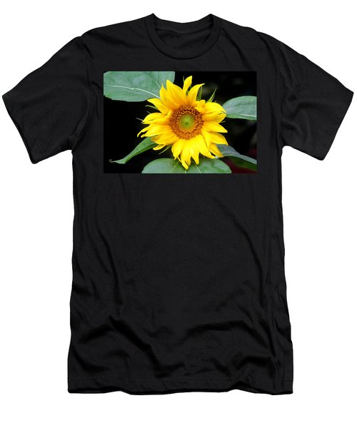 Yellow Sunflower Men's T-Shirt (Slim Fit) by Trina  Ansel