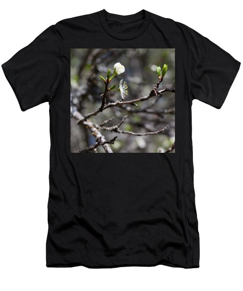 Young Plums Men's T-Shirt (Athletic Fit)