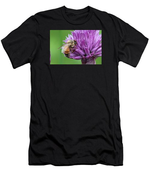 Yummm Chive Nectar Men's T-Shirt (Athletic Fit)